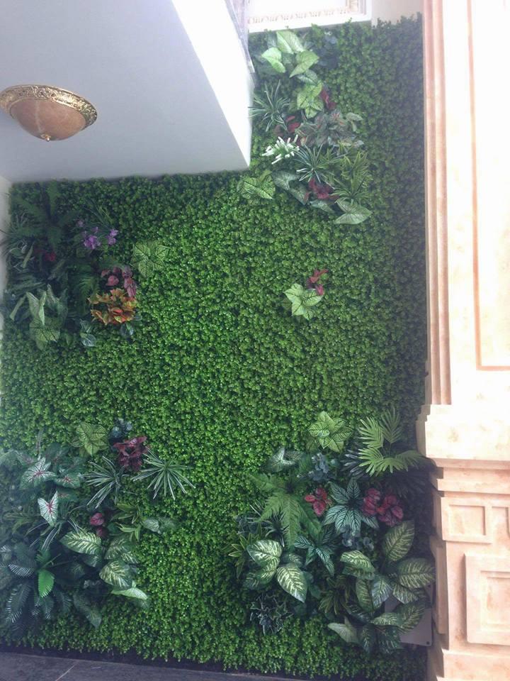 tường cây tường cỏ giả hà nội