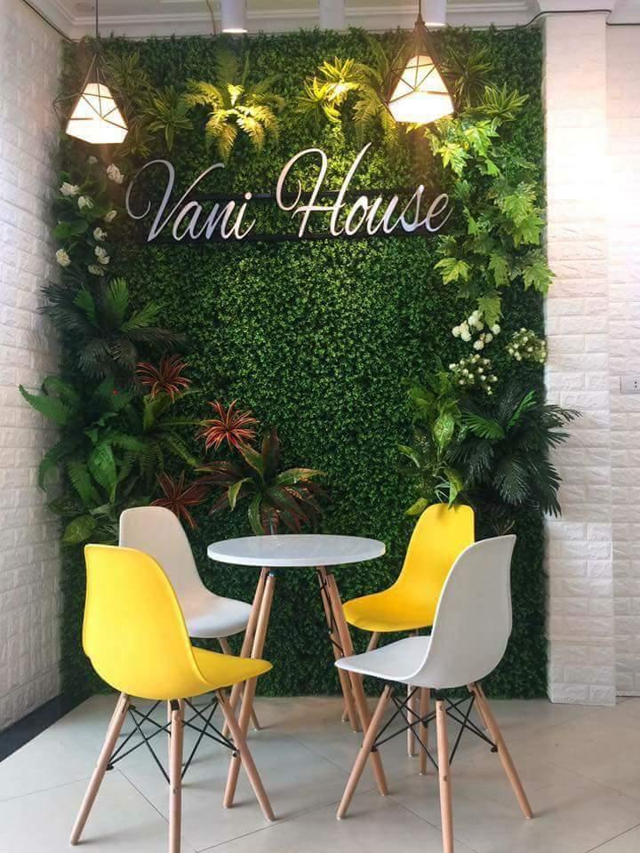 Cỏ dán tường - cỏ tấm trang trí tường cây
